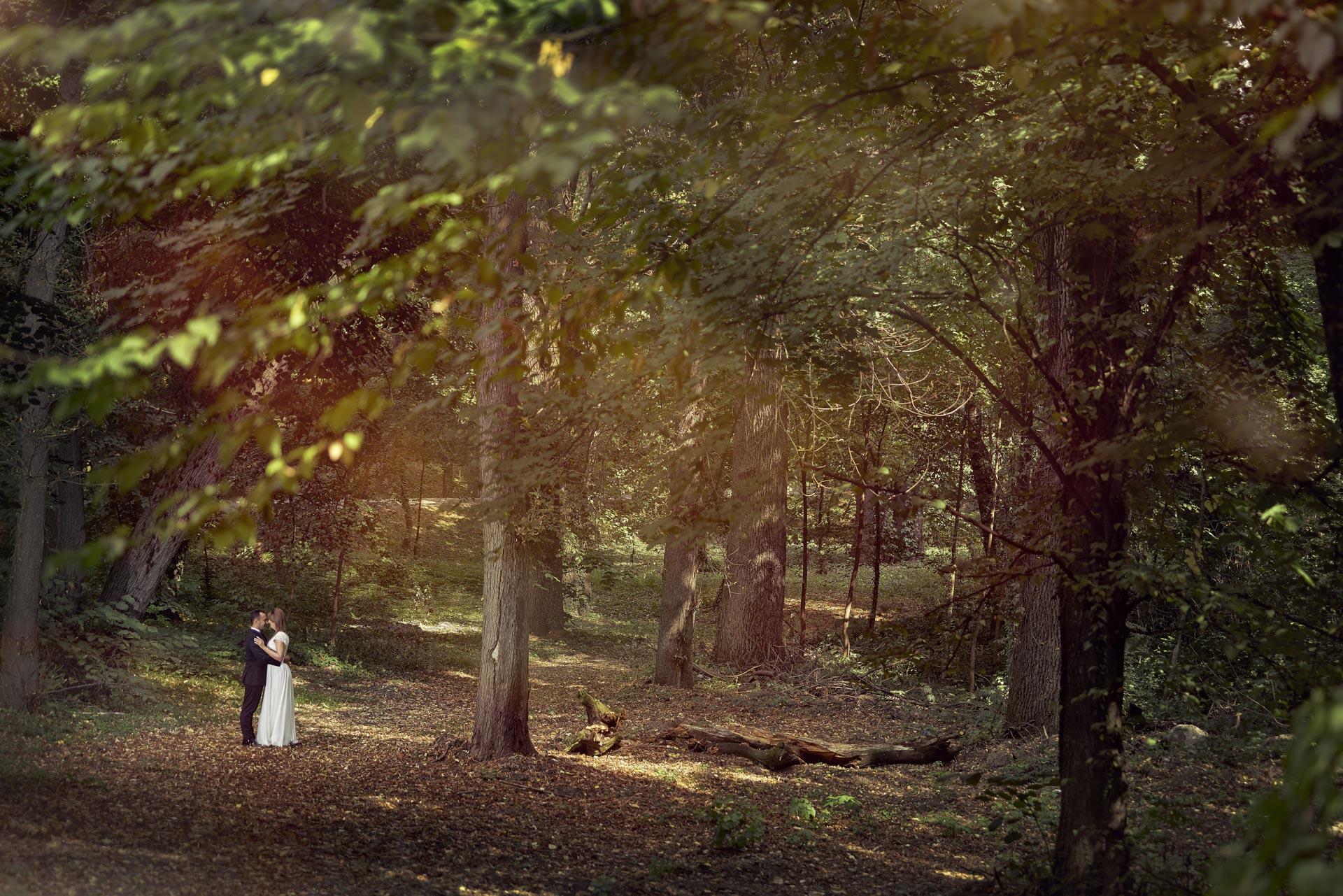 Poze nunta Palatul Stirbei